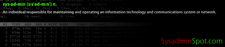 Find What IP Address cPanel Site Is Using via Command Line